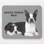 Compinches Mousepad de Boston Terrier