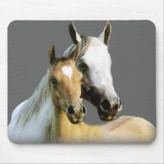 Compinches Mousepad del caballo