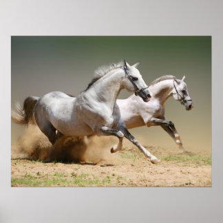 Compita con la impresión de los caballos del póster