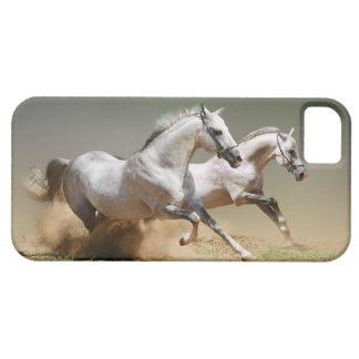 Compita con los caballos del viento iPhone 5 carcasa