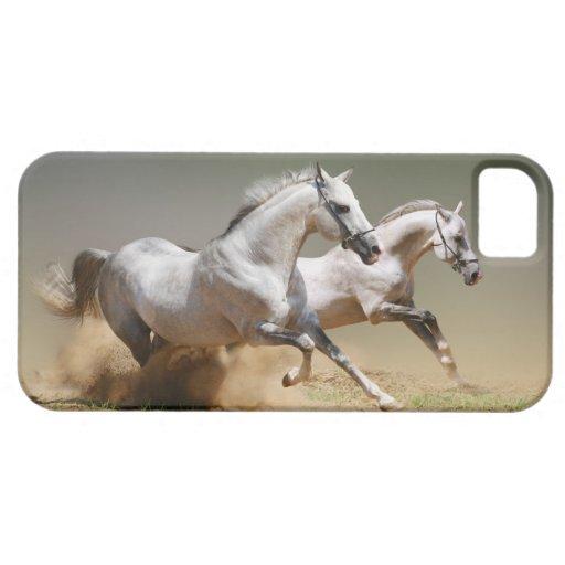 Compita con los caballos del viento iPhone 5 cárcasas