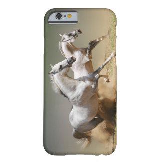 Compita con los caballos del viento funda de iPhone 6 slim