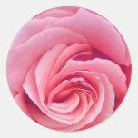 Complejidad del pegatina color de rosa rosado