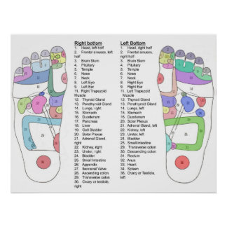 Complete foot Acupressure diagram Poster