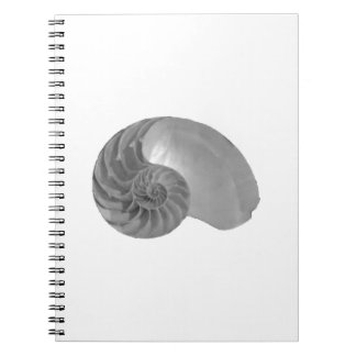 Complexity Simplicity Nautilus Shell Note Books