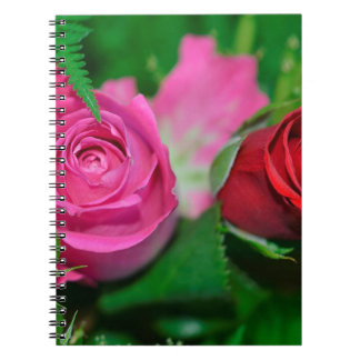 Composed Keen Skillful Accepted Notebook