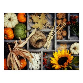 Composición del otoño en caja de madera postal
