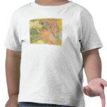 Composite Colorado T Shirt