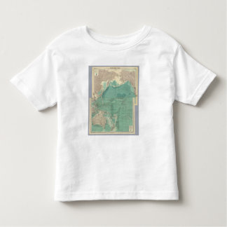 Composite Pacific Ocean Toddler T-shirt