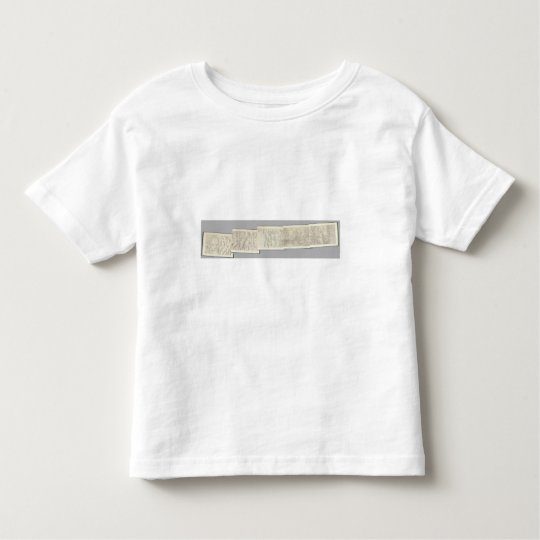 Composite Topographical maps IV Toddler T-shirt