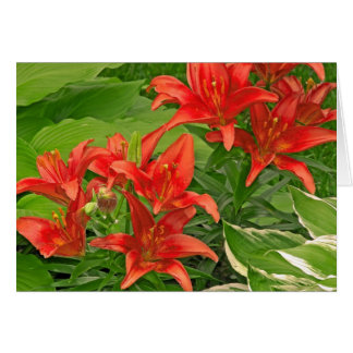 Composure Bright Red Lilies Card