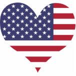 Compre la bandera de Estados Unidos Escultura Fotográfica