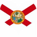 Compre la bandera de la Florida Escultura Fotografica