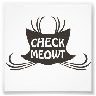 Compruebe el maullido del gato del gatito de Meowt Fotografías