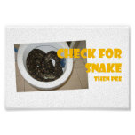 Compruebe para saber si hay serpiente… entonces ha posters