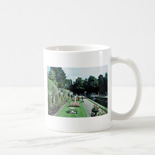Compton Acres Italian Gardens, Poole, U.K.  flower Classic White Coffee Mug