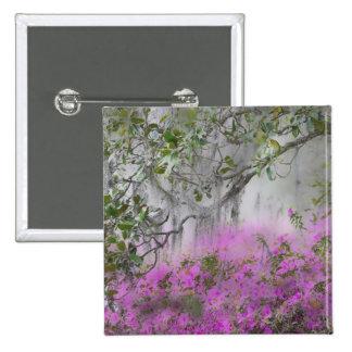 Compuesto de Digitaces de azaleas y del árbol de l Pin Cuadrada 5 Cm