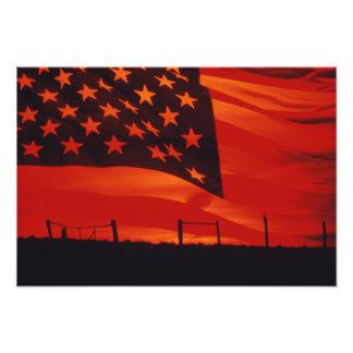 Compuesto de Digitaces de la bandera americana Cojinete