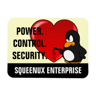 Computer Geek Valentine: Be Secure in Your Love Rectangle Magnets