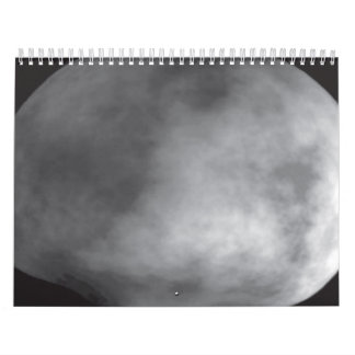 Computer Model of the Asteroid Vesta Wall Calendars