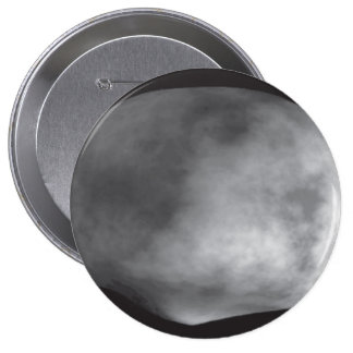 Computer Model of the Asteroid Vesta Pins