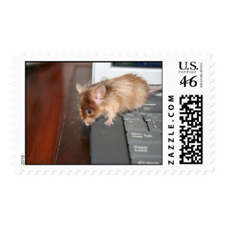 Computer Mouse Stamp