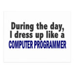 Computer Programmer During The Day Postcard