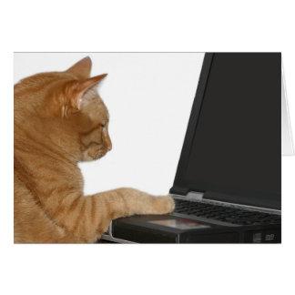 computing cat greeting card