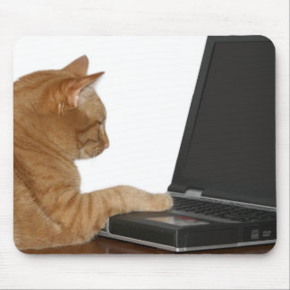 computing cat mouse pad