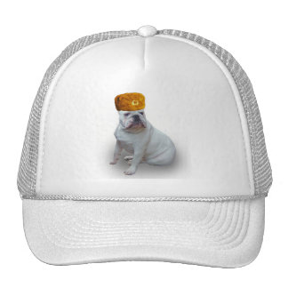 Comrad Bulldog Trucker Hat
