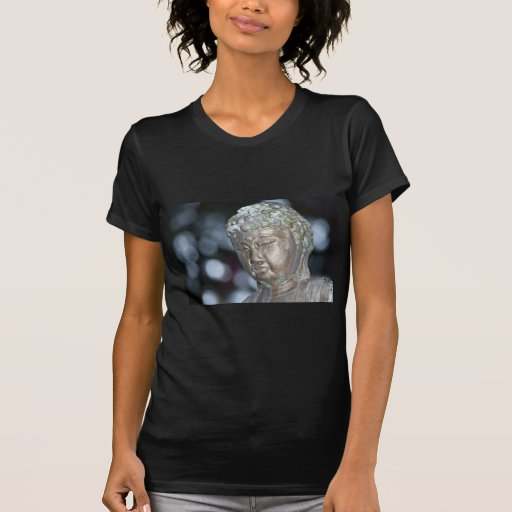 Comtemplación de Buda Camisetas