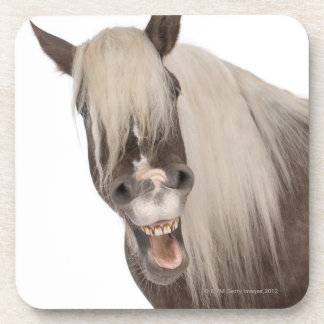 Comtois horse is a draft horse - Equus caballus Beverage Coaster