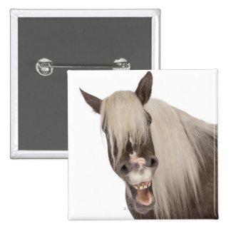 Comtois horse is a draft horse - Equus caballus Button