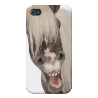 Comtois horse is a draft horse - Equus caballus iPhone 4/4S Covers