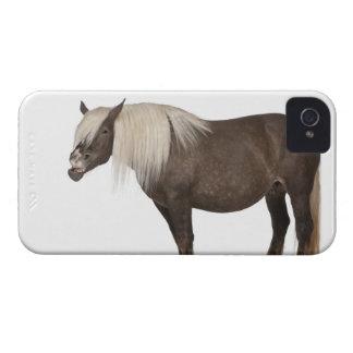 Comtois horse is a draft horse - Equus caballus iPhone 4 Case