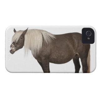 Comtois horse is a draft horse - Equus caballus iPhone 4 Case-Mate Case