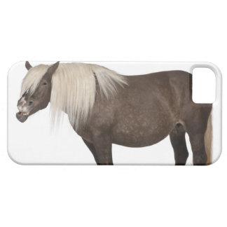 Comtois horse is a draft horse - Equus caballus iPhone SE/5/5s Case