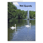 Con condolencia, los cisnes y la fuente felicitaciones