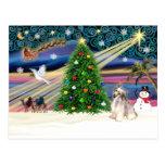 Con cresta Magia-Chino de Navidad Postales