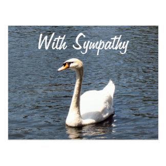 Con el cisne del blanco de la condolencia tarjeta postal