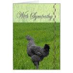 Con la condolencia (pérdida de un pollo) tarjeta de felicitación