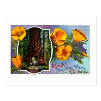 Con los mejores deseos del Año Nuevo de California Tarjeta Postal