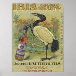 Coñac de Ibis - José Gautier y promo de Fils Posters
