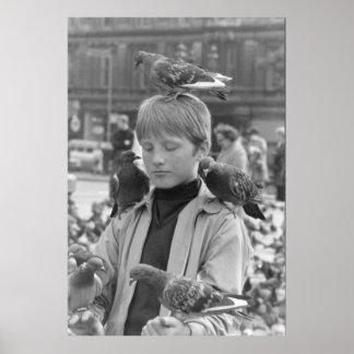 Concentración para un St Francis joven 1968 Poster