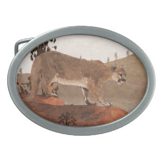 Concentración - puma hebillas cinturon ovales