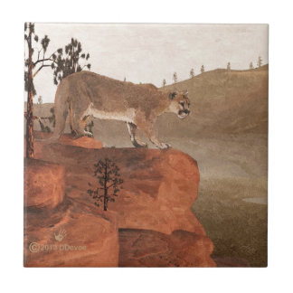 Concentration - Cougar Tile