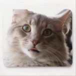 concentration face mouse pads