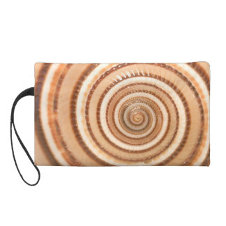 Concentric Circles of a Seashell Wristlet