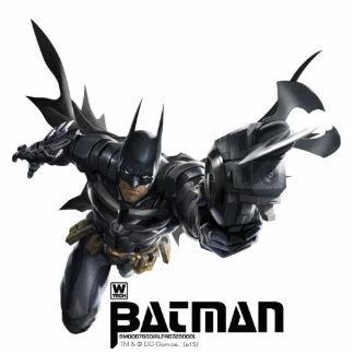 Concept Batman With Batclaw Statuette