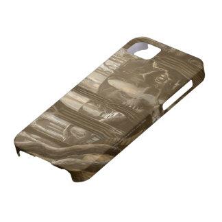 Concepto del reino del arbolado iPhone 5 Case-Mate funda